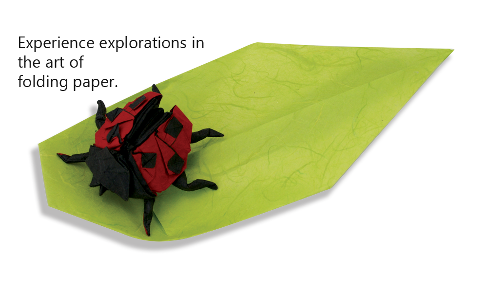 Ladybug-and-leaf